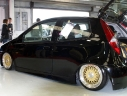 10170-lenso-bsx-gold-fiat-punto
